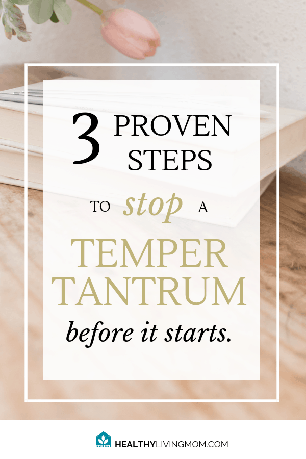 3 Proven Steps to Stop a Temper Tantrum Before It Starts 2